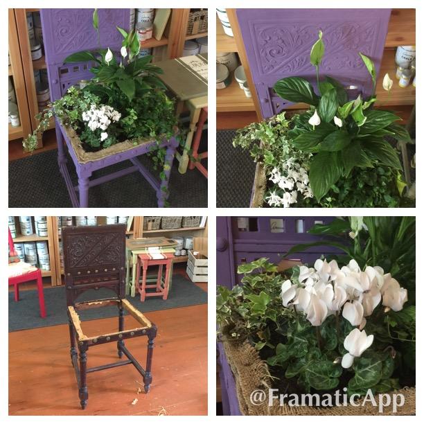 Zo stoličky kvetináč
